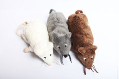 Three plush mouses. Three mouses on the white background stock images