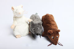 Three plush mouses. Three mouses on the white background stock image