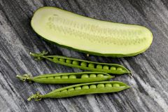 Three pods of green peas and cucumber on a granite plate Stock Photography