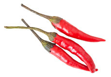 Three pods of hot pepper Royalty Free Stock Image