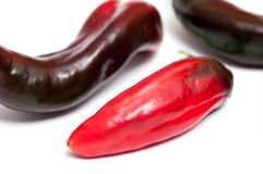 Three pointed pepper Royalty Free Stock Image