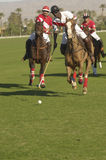 Three Polo Players In Action Royalty Free Stock Photography