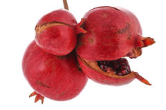 Three Pomegranate white background Stock Photography