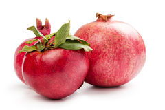 Three pomegranates Stock Photography
