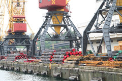 Three port cranes with the cargo Stock Image