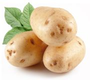 Three potatoes with leaves. Royalty Free Stock Photo