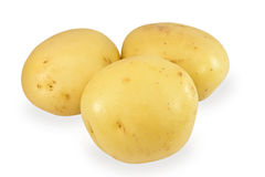 Three potatoes on a white background Stock Image