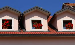 Three pots of Geraniums on the three Windows of the House Stock Photography