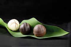 Three pralines. On a green leaf Royalty Free Stock Photos