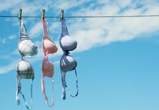 Three pretty bras dryng. Royalty Free Stock Photography