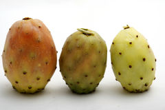 Three prickly pears. Standing one next to the other on white background Stock Image