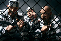 Three prisoners. men in suits of convicts. Stock Photos