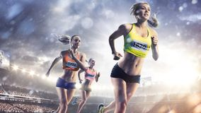 Three professional female runners at grand arena Royalty Free Stock Image