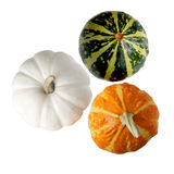 Three pumpkin Royalty Free Stock Photos