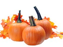 Three pumpkin Royalty Free Stock Image