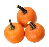 Three pumpkin Stock Images