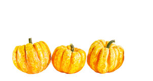 Three pumpkin on a white background Stock Photography