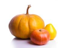 Three pumpkins. Three ripe pumpkins on white Royalty Free Stock Image