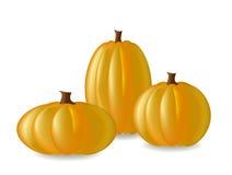 Three pumpkins Stock Images