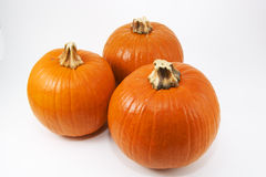 Three pumpkins. Top down view of three high resolution pumpkins isolated on a white background Royalty Free Stock Photo