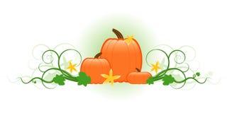 Free Three Pumpkins Royalty Free Stock Image - 3395796