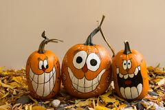 Free Three Pumpkins Against Beige Stock Photos - 101736213
