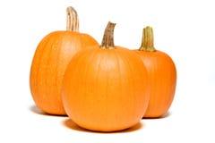 Three Pumpkins Close Stock Photography