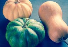 Three pumpkins on the dark wooden background Royalty Free Stock Photo