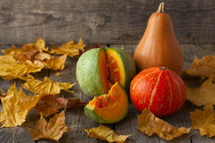 Three pumpkins of different colors Stock Photo