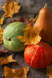 Three pumpkins of different colors Royalty Free Stock Images