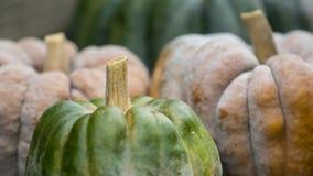 Three pumpkins on display Royalty Free Stock Images