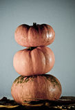 Three pumpkins. Three pumpkins with fall leaves Stock Photography