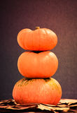 Three pumpkins. Three pumpkins with fall leaves Royalty Free Stock Photos