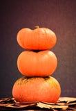 Three pumpkins. Royalty Free Stock Photos