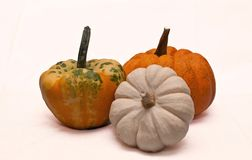 Three pumpkins in a group Royalty Free Stock Photo