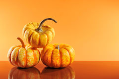 Three pumpkins Stock Photos