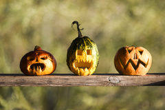 Three pumpkins for halloween party. Royalty Free Stock Images