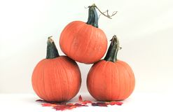 Three Pumpkins - Isolated Royalty Free Stock Photos