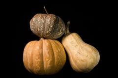 Three Pumpkins Isolated on Black Royalty Free Stock Photos