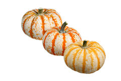 Three pumpkins isolated on white background. Three colorful pumpkins arranged diagonally on white background Stock Image