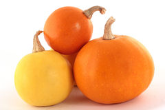 Three pumpkins isolated on a white background with a drop shadow. Clipping path included Stock Images