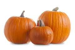 Three Pumpkins Isolated on White Background with Shadow Stock Photography