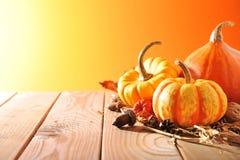 Three pumpkins Stock Photos