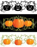 Three pumpkins for thanksgiving Royalty Free Stock Photos