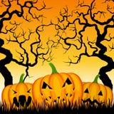 Three pumpkins and trees Royalty Free Stock Photo
