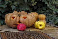Three pumpkins, two quinces and a pomegranate against a background of ivy. royalty free stock photography