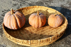 The three pumpkins Stock Photography