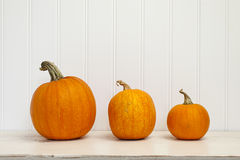 Three pumpkins Royalty Free Stock Image