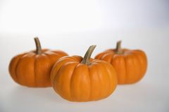 Three pumpkins on white. Stock Photos
