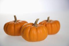 Three pumpkins on white. Stock Photos